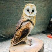 Wood_Simon_Groves_owl_II_sculpture
