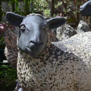 Ceramics - Jon Barrett Danes - Happy sheep