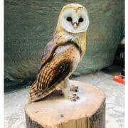 Wood-Simon-Groves-owl-II-sculpture_bh2