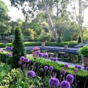 Borde-Hill-Garden-Image