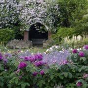 Borde-Hill-Rose-Garden-Shelter