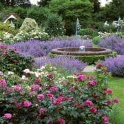 Borde-Hill-Rose-Garden-Contemporary-Craft-Show